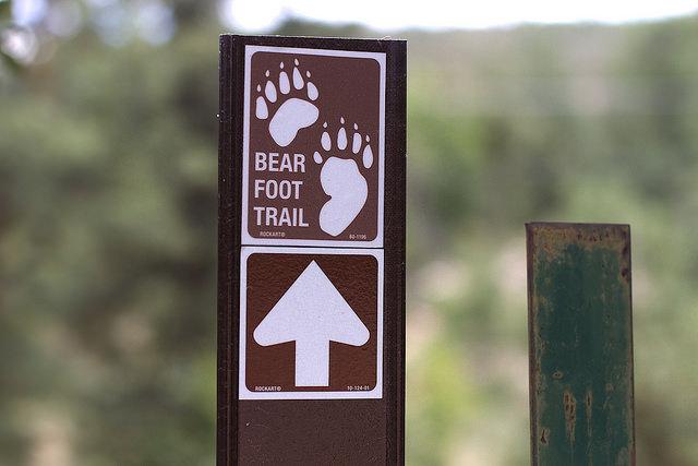 bearfoot-trail
